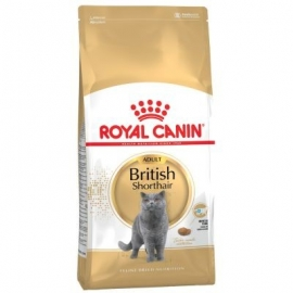Royal Canin British Shorthair 34 10kg kassitoit