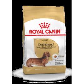Royal Canin Dachshund 28 Adult 3kg koeratoit