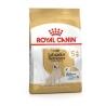 Royal Canin LABRADOR RETRIEVIER ADULT 5+ koeratoit 12kg
