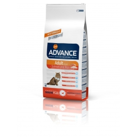 ADVANCE Cat Adult Salmon & Rice 15kg kassitoit