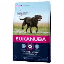 Eukanuba Mature & Senior koeratoit suurtele koertele 15kg